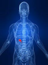 diseased gallbladder cause pancreatitis